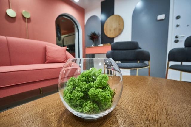 green plant room