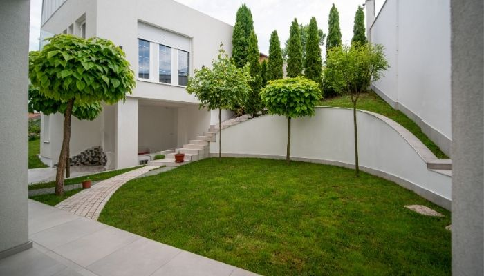 How to Make a Luxury Backyard in your Home?
